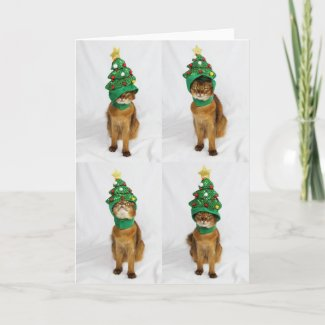 Cat Christmas Tree Hat Greeting Card