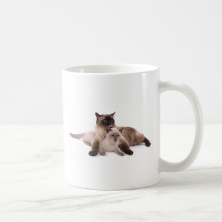cat classic white coffee mug