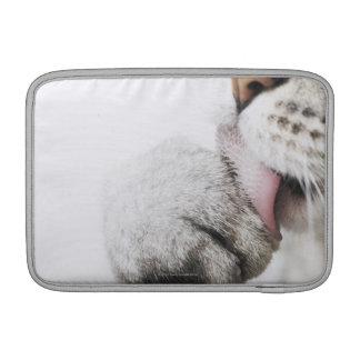 Cat cleaning paw MacBook sleeves