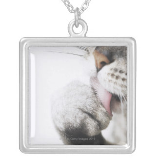Cat cleaning paw silver plated necklace