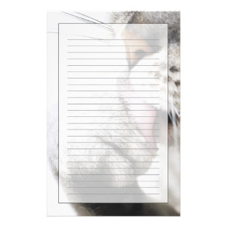 Cat cleaning paw stationery
