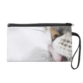 Cat cleaning paw wristlet purse