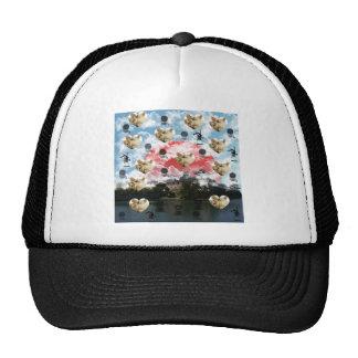 Cat coffee Imabari compilation Hats