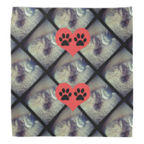 Cat Collage with PawPrints by Shirley Taylor Bandana