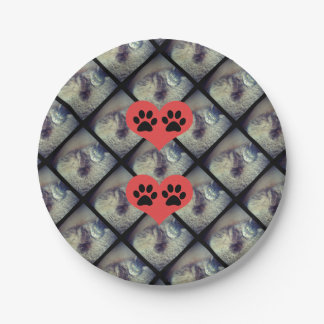 Cat Collage with PawPrints by Shirley Taylor Paper Plate