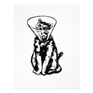 Cat Cone Letterhead
