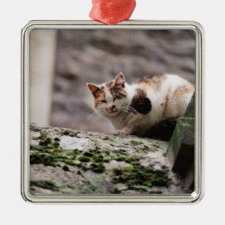 Cat crouching on rock wall metal ornament