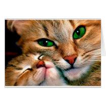 Cat cuddles. card