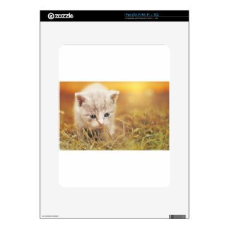Cat Cute Cat Baby Kitten Pet Animal Charming iPad Decals