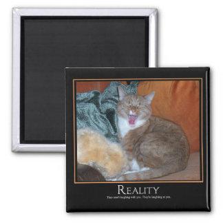 Cat Demotivator Magnet