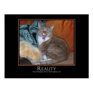 Cat Demotivator Postcard