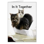 cat design blank card In It Together Cards
