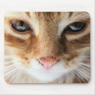 cat design mouse pad