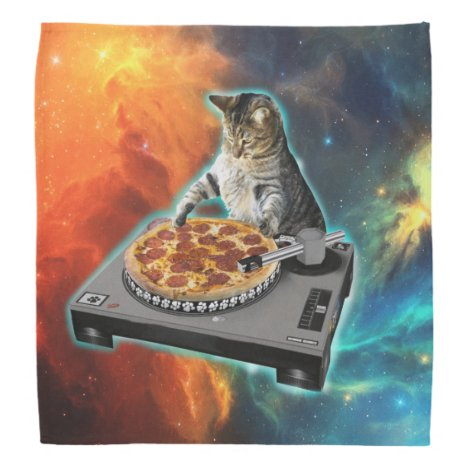 Cat dj with disc jockey's sound table bandana