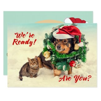 Cat & Dog Two Sided Christmas Card