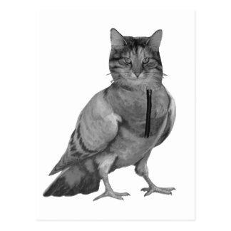 Cat Doing Bird Postcard