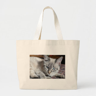 Cat Domestic Cat Kitten Mieze Mackerel Pet Large Tote Bag