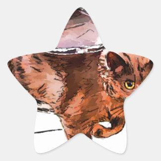 cat door star sticker