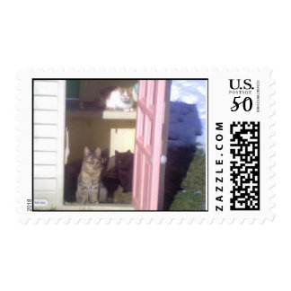 Cat Doorway Postage