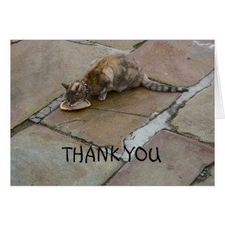Cat Drinking Thank You Card