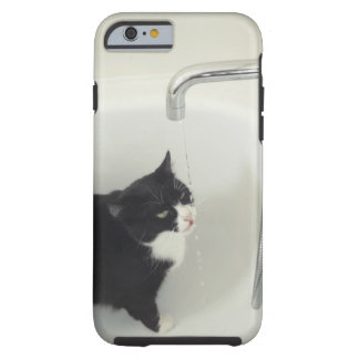 Cat Drinking Water Dripping From A Tap iPhone 6 Case