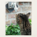 "Cat drinking water. planner<br><div class=""desc"">My cat drinking water out of the garden tap.</div>"