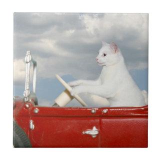 Cat driving a car tiles