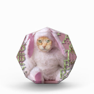 Cat Easter Bunny Claude Award