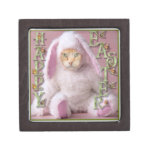 Cat Easter Bunny Claude Jewelry Box