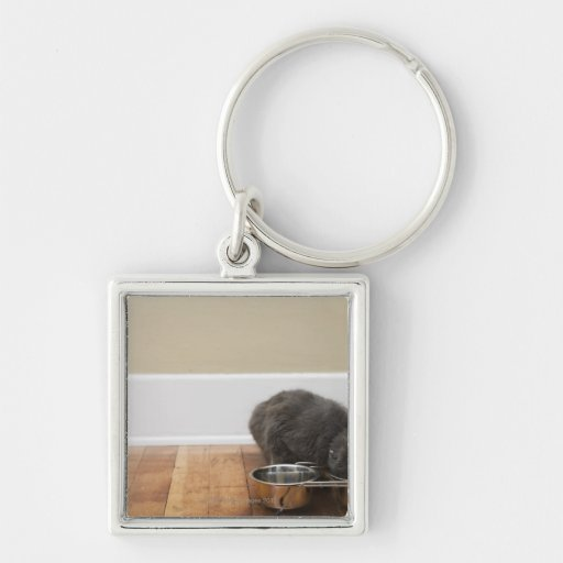 Cat eating from bowl key chain