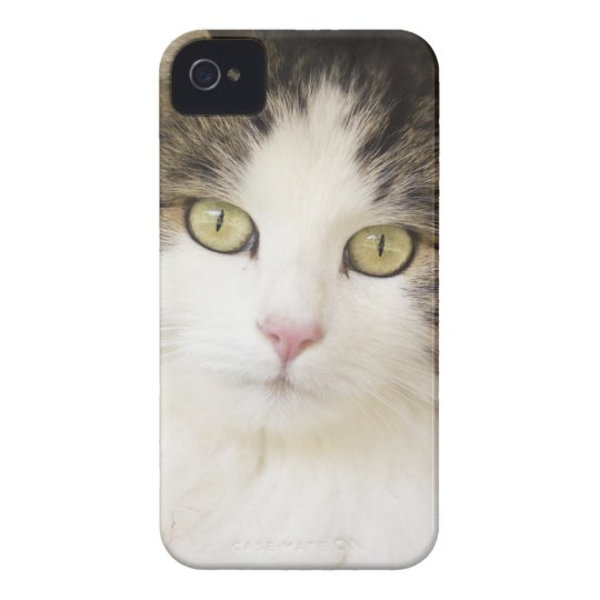 CAT ELECTRONICS DEVICE COVER