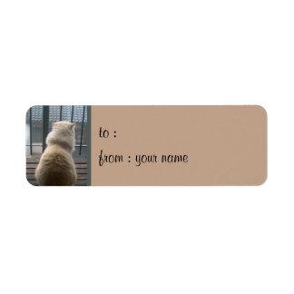 Cat Escape small Gift Tag Label