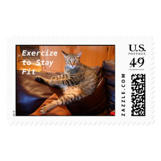 Cat Exercize to Stay Fit Stamps