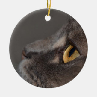Cat Eye-Macro by Shirley Taylor Ceramic Ornament