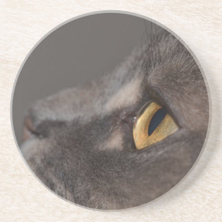 Cat Eye-Macro by Shirley Taylor Sandstone Coaster