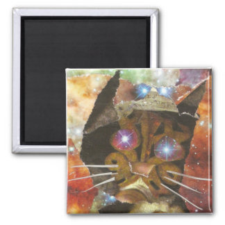 Cat Eyes 2 Inch Square Magnet