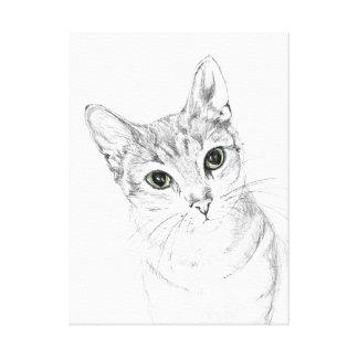 Cat Eyes A Pencil Drawing Canvas Print