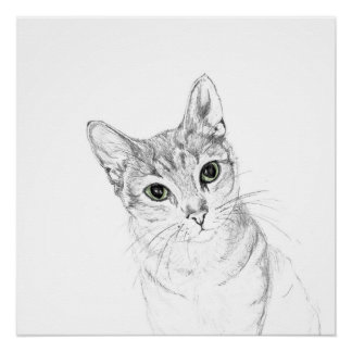 Cat Eyes A Pencil Drawing Poster