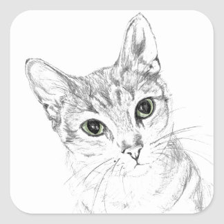 Cat Eyes A Pencil Drawing Square Sticker