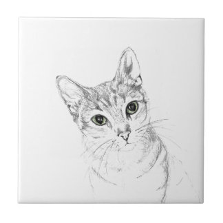 Cat Eyes A Pencil Drawing Tile