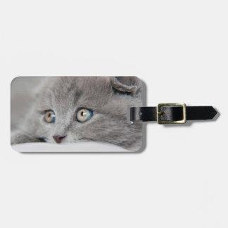 Cat Eyes Bag Tag