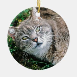 Cat Eyes Ceramic Ornament