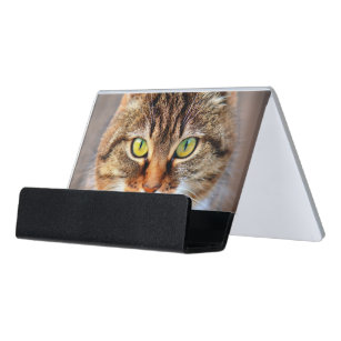 Kitty cat business card holders zazzle cat eyes desk business card holder reheart Gallery