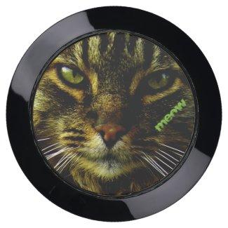 Cat Eyes Hypnotizing Photo with Text
