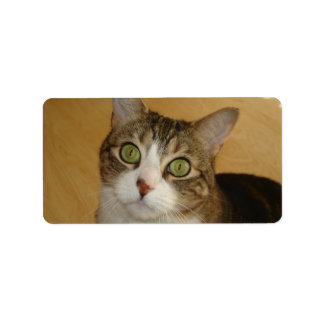 Cat Eyes Label