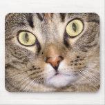 Cat Eyes Mousepad