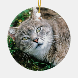 Cat Eyes Double-Sided Ceramic Round Christmas Ornament