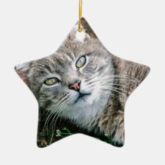 Cat Eyes Double-Sided Star Ceramic Christmas Ornament