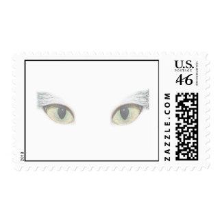 Cat Eyes Postage Stamp