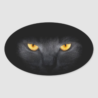 Cat Eyes Stickers